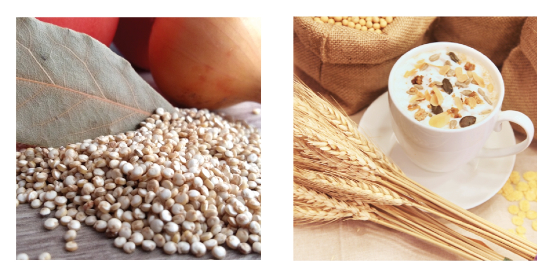 Quinoa vs. Hafer Superfood